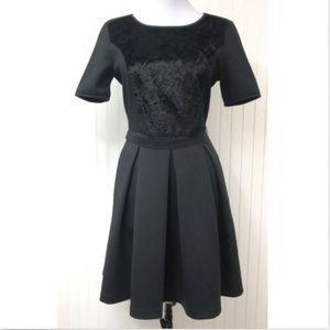 Elie Tahari Dress Size 6 LBD Fit Flare Black S/S